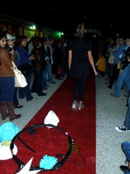 Bohemian Texas Street Home Fashion Show, red carpet performance, Luminaria 2014